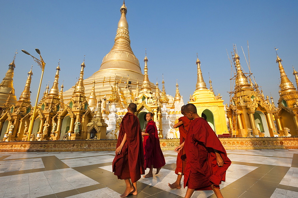 Monks walk around Shwedagon Pagoda, Yangon (Rangoon), Myanmar (Burma), Asia