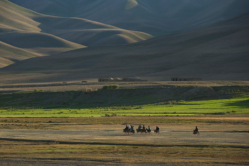 Donkeys are the main source of transport in rural Bamiyan province, Afghanistan, Asia