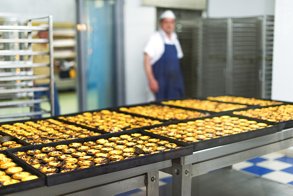 Trays of freshly baked Pasteis de Nata (custard tarts) at Pasteis de Belem in Lisbon, Portugal, Europe
