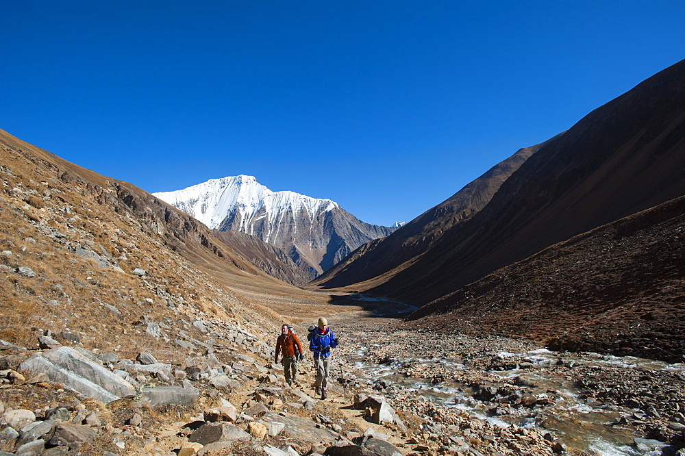 Trekking towards the Kagmara La pass, in the Kagmara valley in Dolpa, a remote region of Nepal