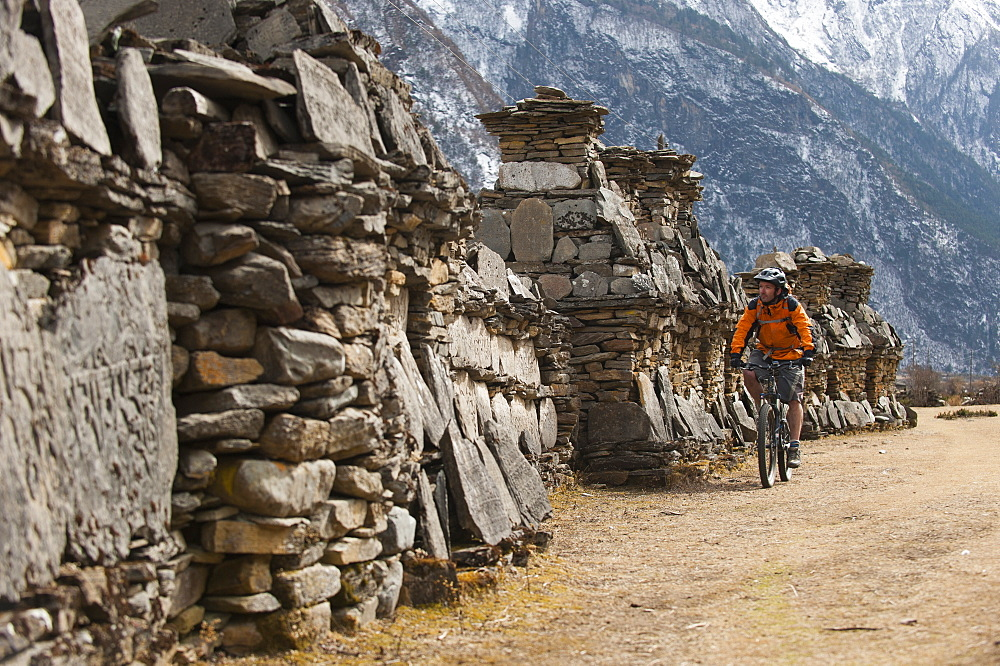 A mountain biker cycles past a line of chortens in the Tsum valley, Manaslu region, Nepal, Asia