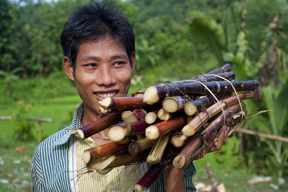 A man from the Chittangong Hill Tracts in Bangladesh carries freshly cut sugarcane, Bangladesh, Asia