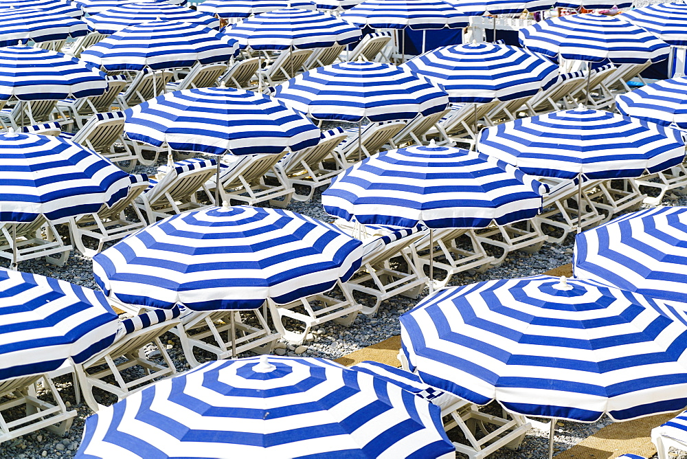 Blue and white beach parasols, Nice, Alpes Maritimes, Cote d'Azur, Provence, France, Mediterranean, Europe