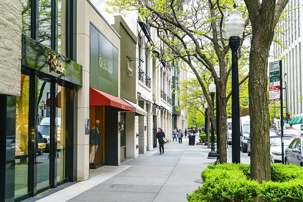 Upscale shopping street, Chicago, Illinois, United States of America, North America