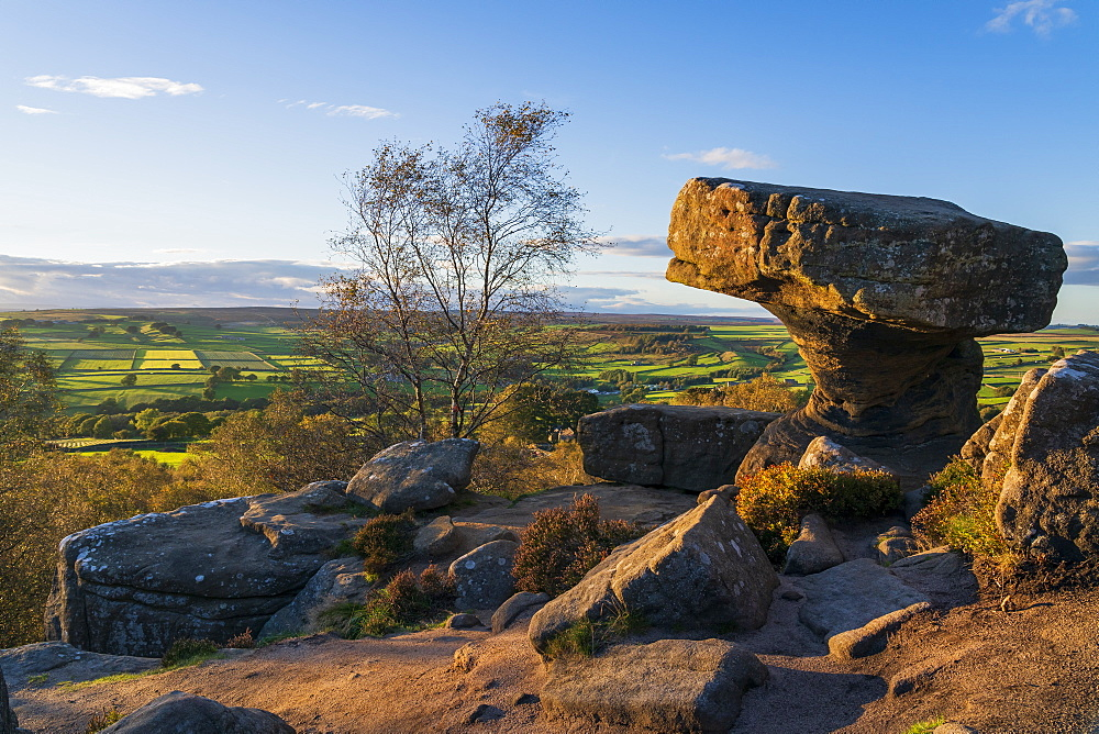 Yordale rocks, Nidderdale near Pateley Bridge, North Yorkshire, UK. - 1228-105
