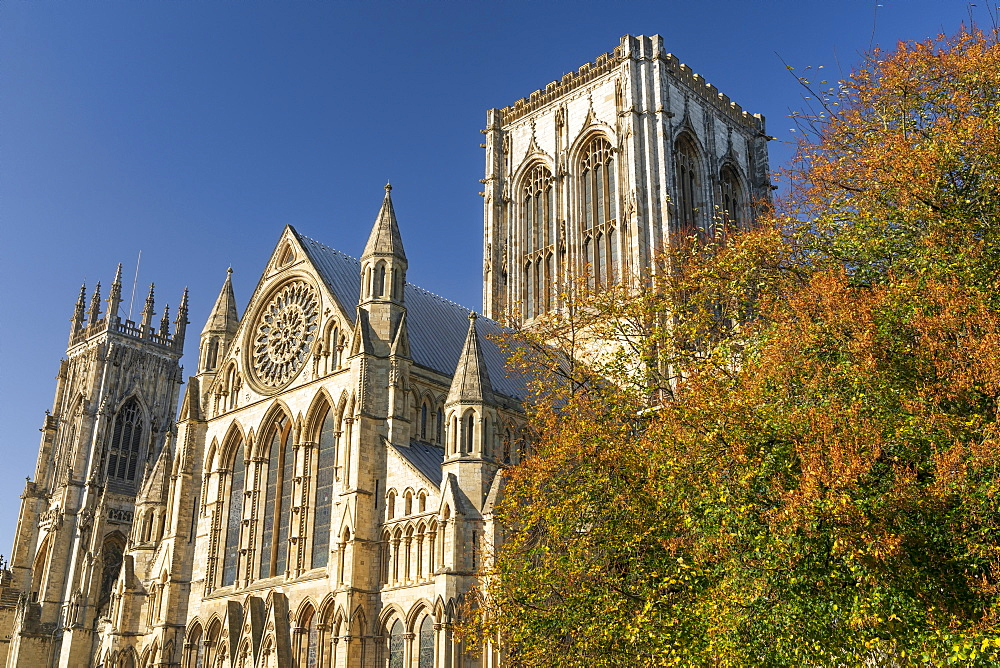York Minster, York, North Yorkshire, UK. - 1228-120