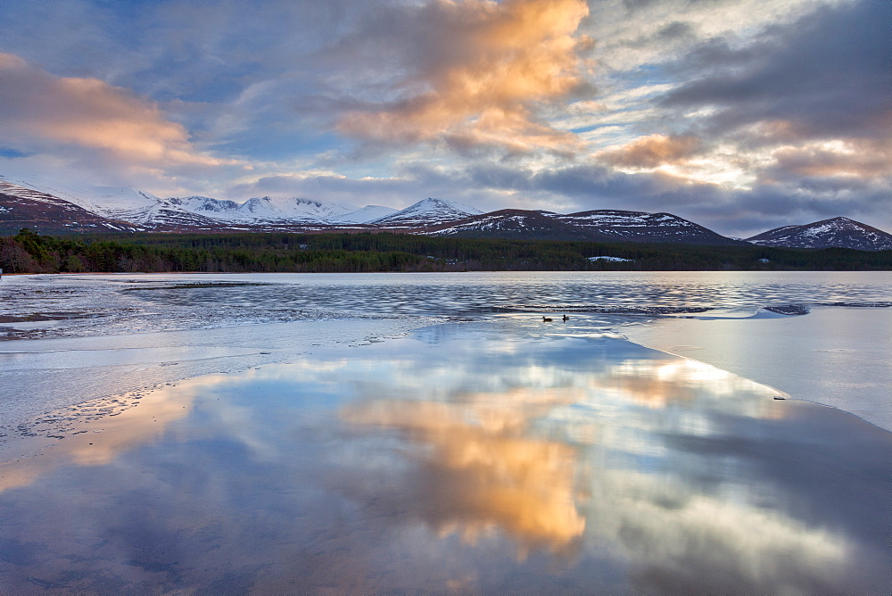 Dawn breaking over Loch Morlich, Glenmore, Scotland, United Kingdom, Europe