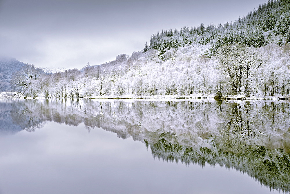Reflections on Loch Chon, Aberfoyle, Styerling, The Trossachs, Scotland in January 2016.