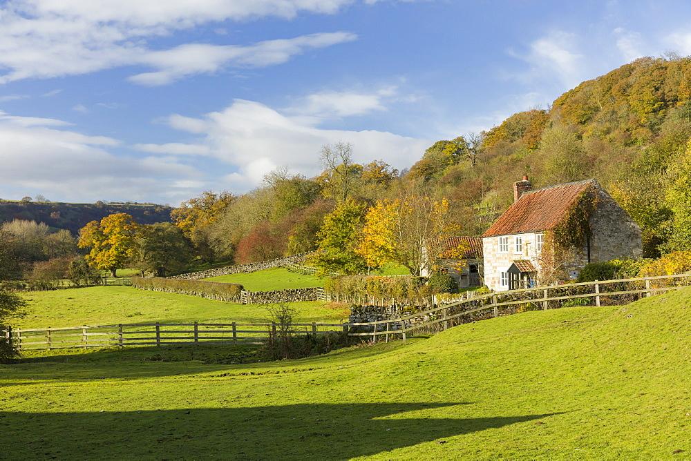 Autumn at Rievaulx Abbey village near Helmsley in North Yorkshire, Yorkshire, England, United Kingdom, Europe - 1228-42