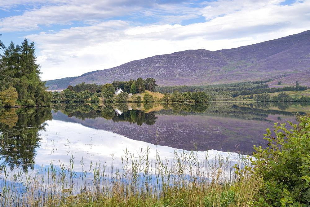 Loch Alvie, Strathspey and Badenoch, Cairngorms, Highland, Scotland, United Kingdom, Europe - 1228-60
