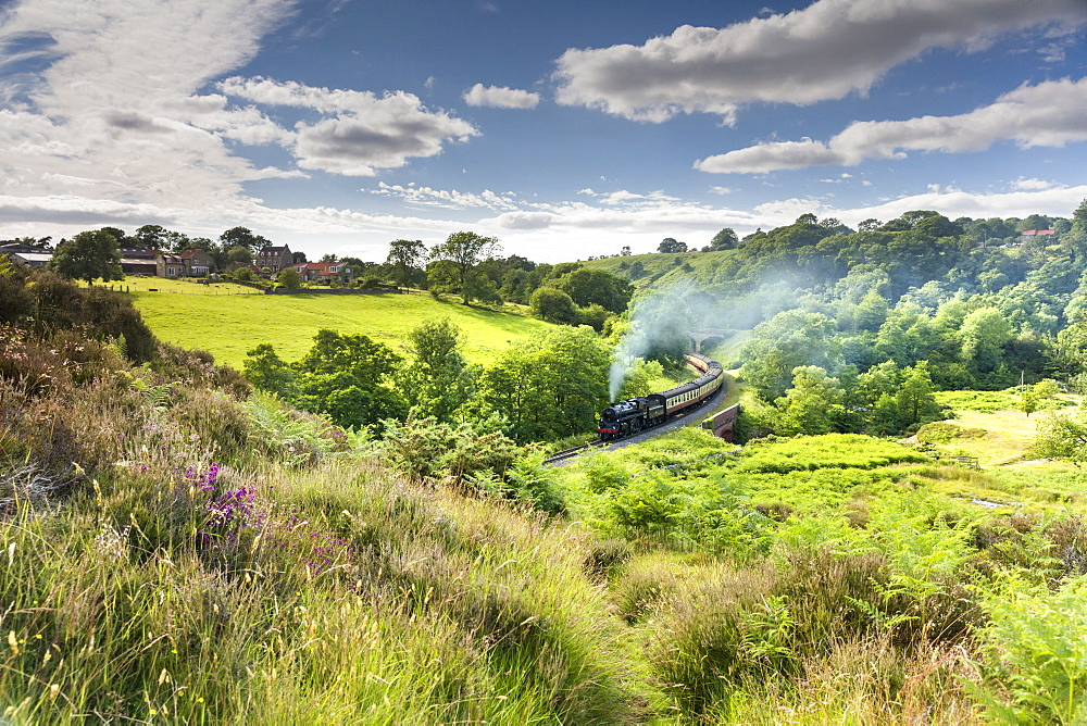 A steam locomotive at Darnholme on the North Yorkshire Railway line travelling from Whitby to Pickering, Yorkshire, England, United Kingdom, Europe - 1228-71