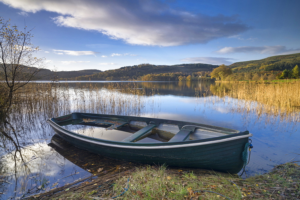 Kinlochard, Loch Ard, Aberfoyle, The Trossachs, Scotland, United Kingdom, Europe