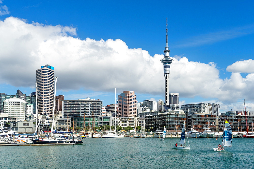 Small sailboats cruise in Auckland harbour in front of the city skyline, Auckland, North Island, New Zealand, Pacific