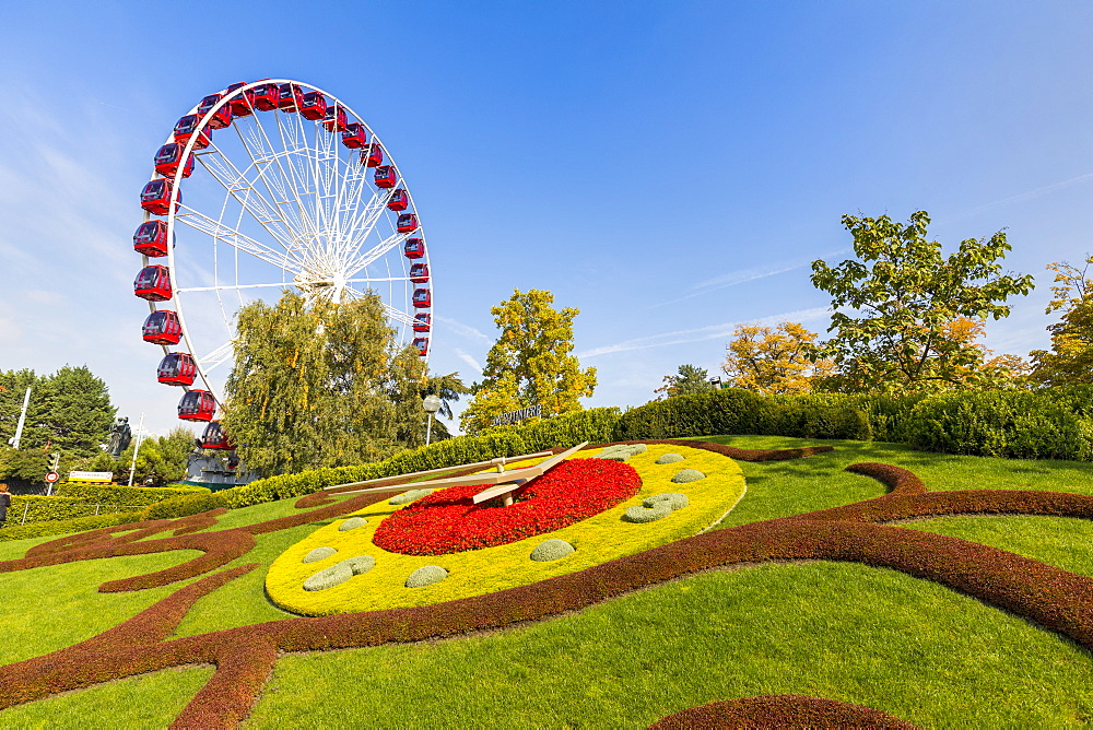 Ferris Wheel and L'horloge fleurie, the flower clock, Jardin Anglais park, Geneva, Switzerland, Europe - 1237-155