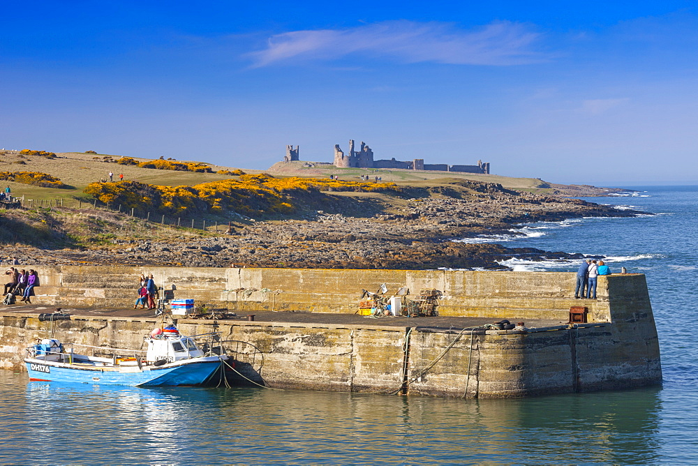 Craster Harbour and Dunstanburgh Castle, Northumberland, England, United Kingdom, Europe