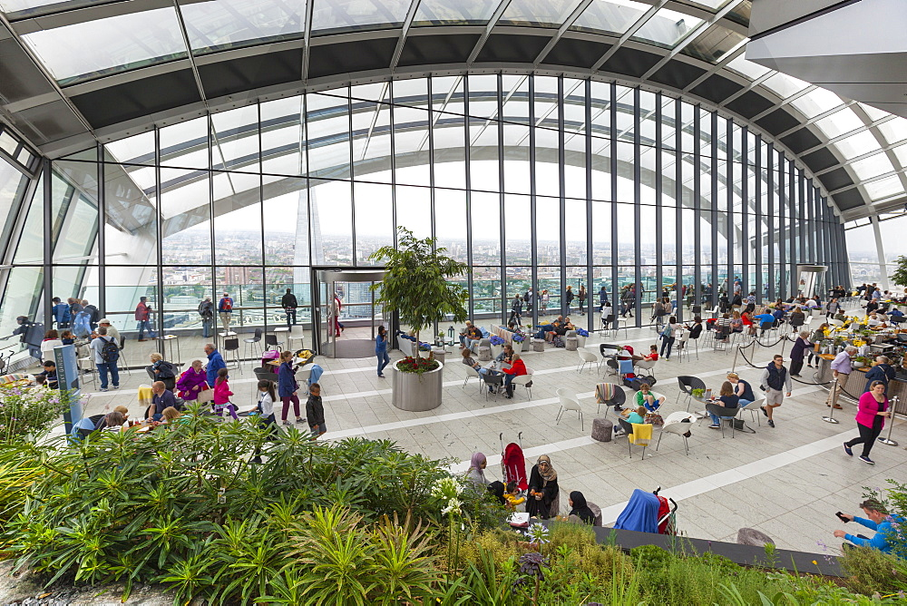 Sky Garden at the Walkie Talkie (20 Fenchurch Street), City of London, London, England, United Kingdom, Europe - 1237-166