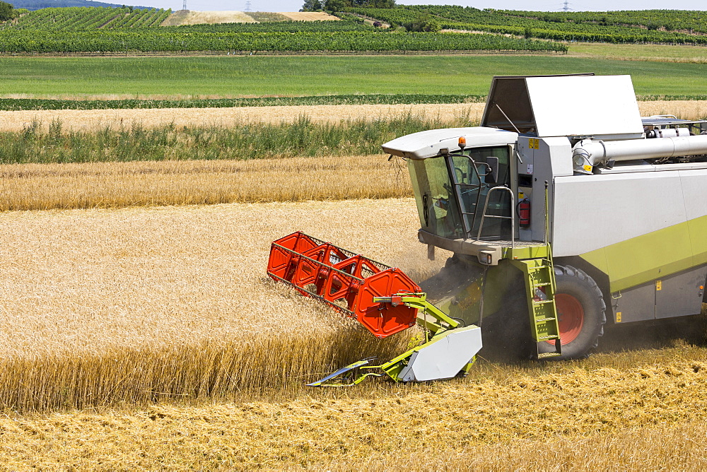 Combine harvester in barley field, Austria, Europe