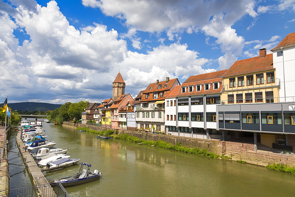 Wertheim, River Tauber, Baden-Wurttemberg, Germany, Europe
