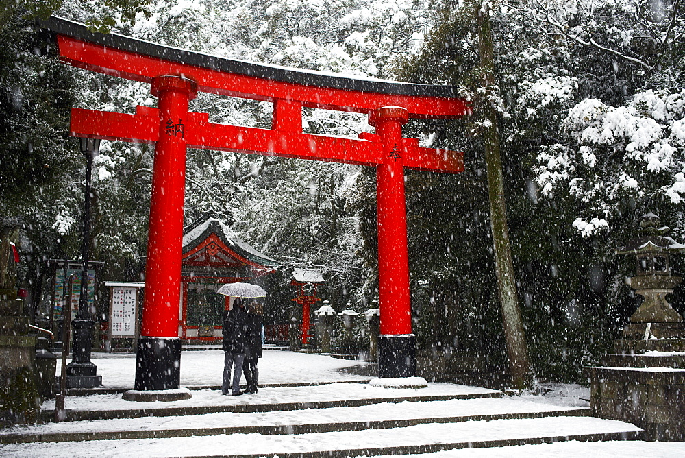 Heavy snow falling on Fushimi Inari shrine, Kyoto, Japan, Asia