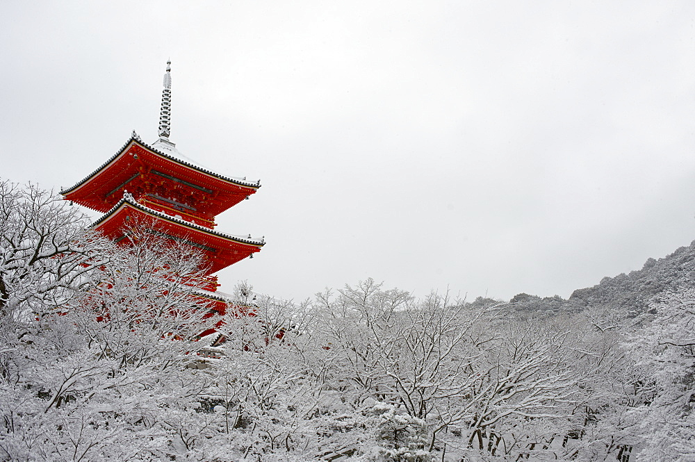 Kiyomizu-dera Temple's pagoda hiding behind snow-covered trees, UNESCO World Heritage Site, Kyoto, Japan, Asia - 1238-28