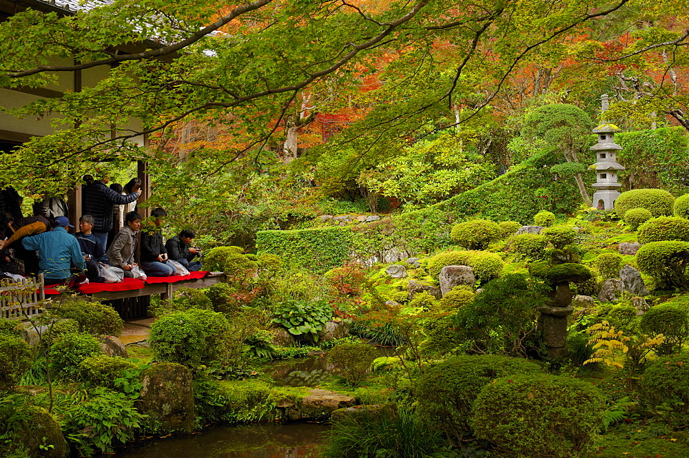 Tourists enjoying early autumn colours in Sanzen-in Temple, Kyoto, Japan, Asia - 1238-39