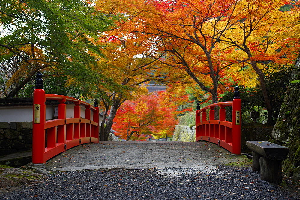 Bridge with autumn colours, Ohara valley, Kyoto, Japan, Asia