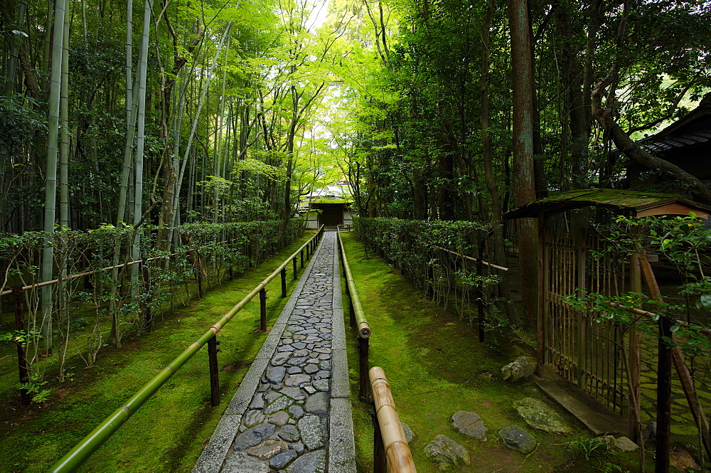 Koto-in temple narrow entrance path, Kyoto, Japan, Asia