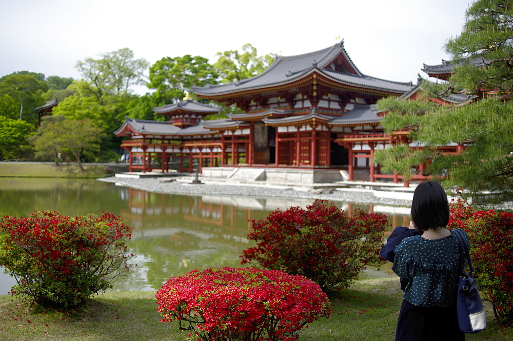 Byodo-in Temple, UNESCO World Heritage Site, Kyoto, Japan, Asia - 1238-75