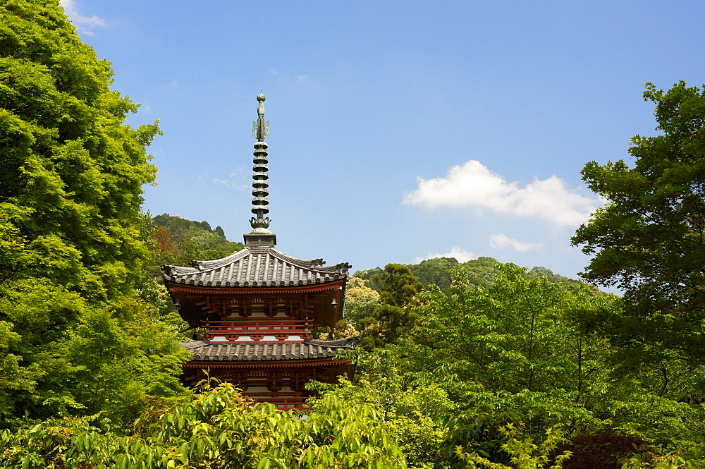 Mimuroto-ji temple pagoda, Kyoto, Japan, Asia