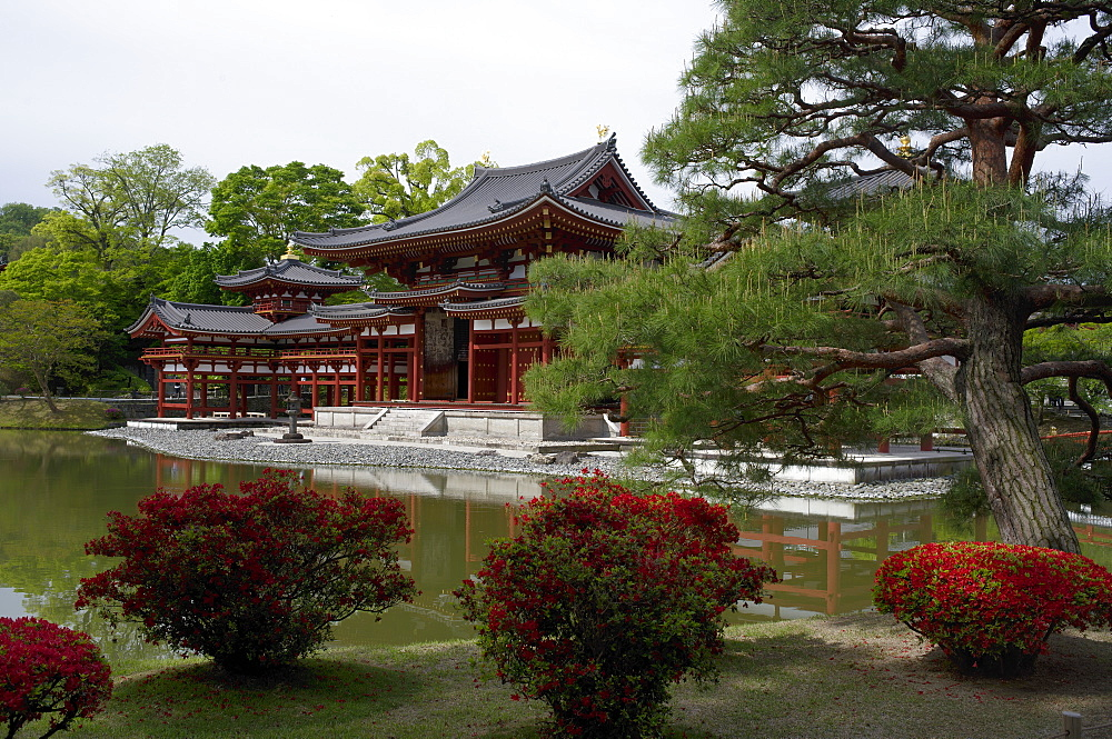 Byodo-in Temple, UNESCO World Heritage Site, Kyoto, Japan, Asia - 1238-93