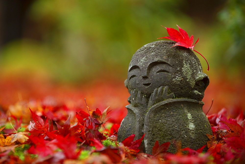 Little jizo statue among fallen maple leaves, Enko-ji temple, Kyoto, Japan, Asia