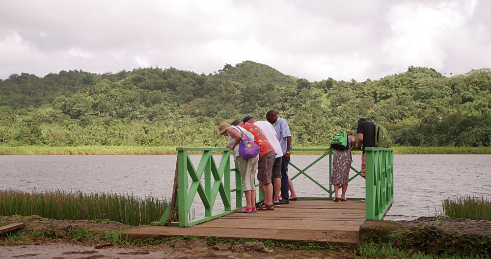 Tourists by the shore of Grand Etang Volcanic Crater Lake, Grand Etang National Park, Grenada, West Indies, Caribbean