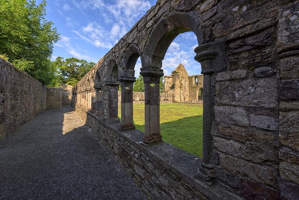 Jerpoint Abbey, County Kilkenny, Leinster, Republic of Ireland, Europe - 1240-168