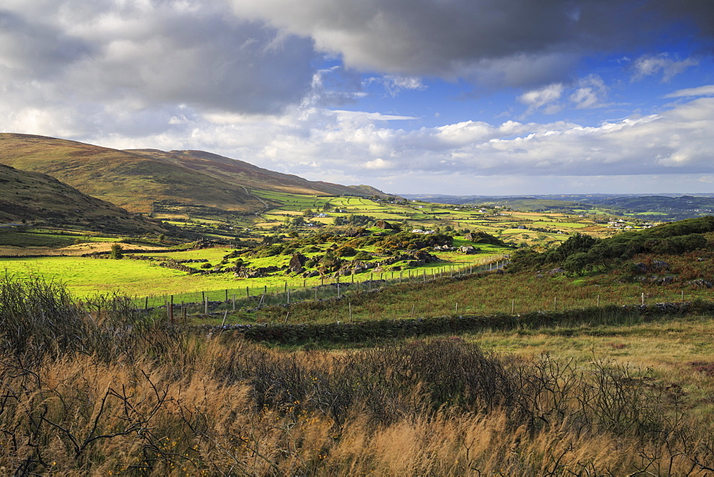 Cooley Mountains, County Louth, Ireland