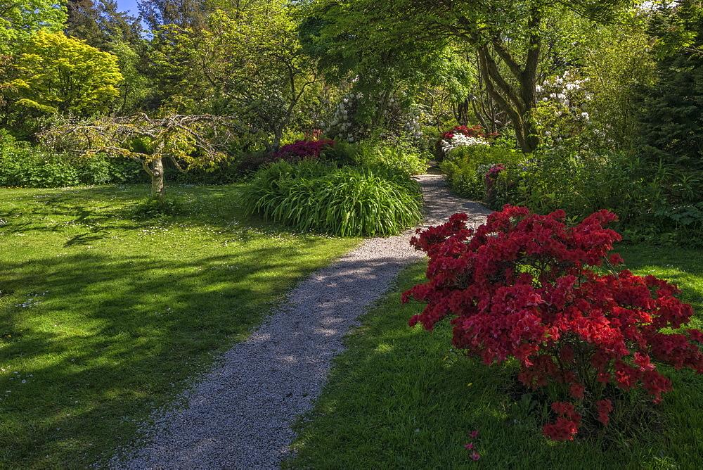 Mount Usher Gardens, County Wicklow, Leinster, Republic of Ireland, Europe