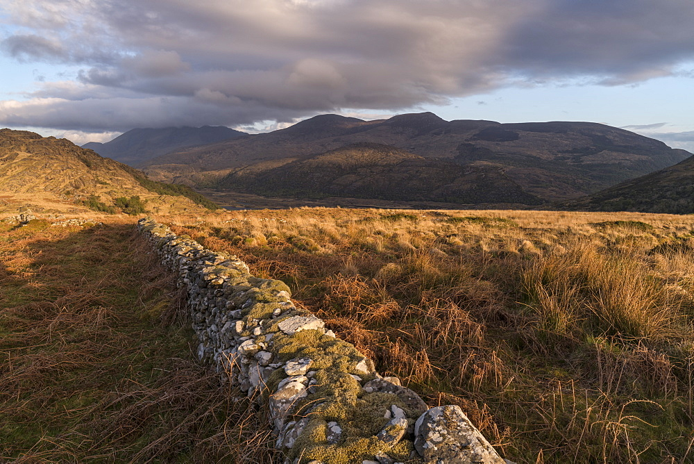 Crinnagh, The Old Kenmare Road, Killarney National Park, County Kerry, Munster, Republic of Ireland, Europe - 1240-219