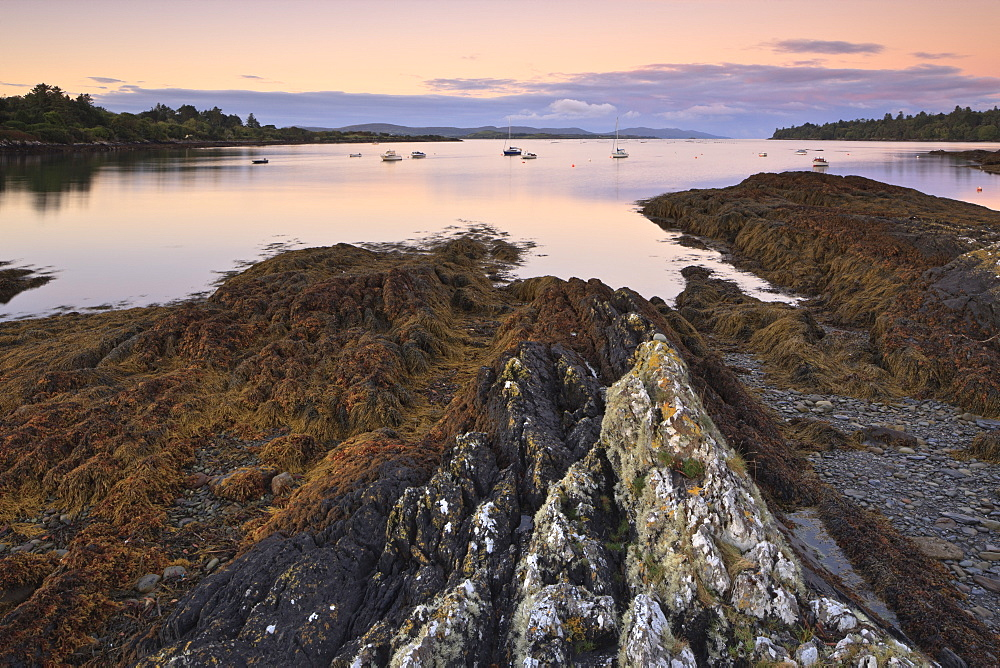 Bantry Bay, County Cork, Munster, Republic of Ireland, Europe