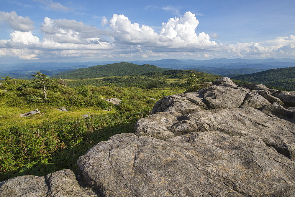 View from one of the many rocky summits of Grayson Highlands State Park, Virginia, United States of America, North America