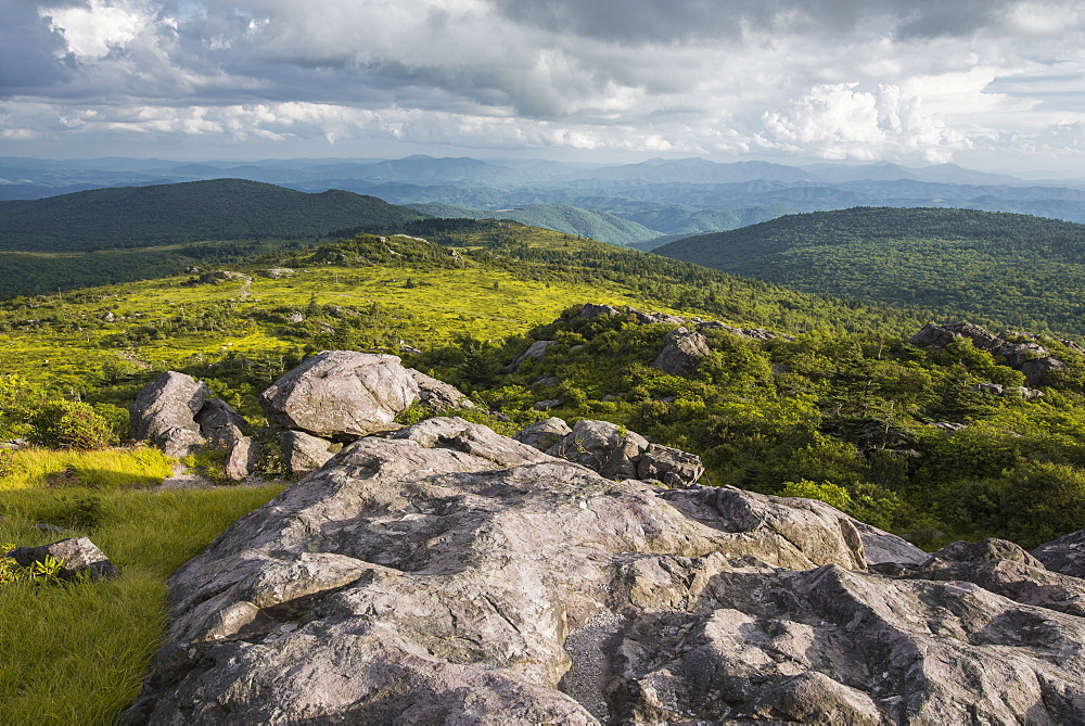 View of Appalachian Mountains from Grayson Highlands, Virginia, United States of America, North America - 1241-40