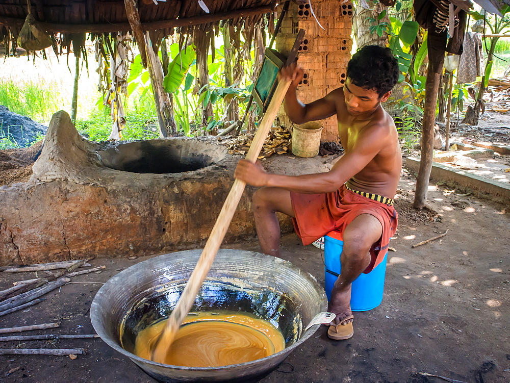 Man making palm sugar over a fire, village near Siem Reap, Cambodia, Indochina, Southeast Asia, Asia