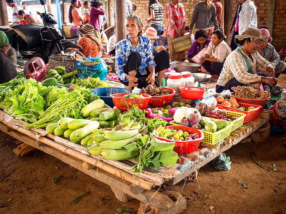 Small market in a country town near Tonle Sap lake, Cambodia, Indochina, Southeast Asia, Asia - 1242-199