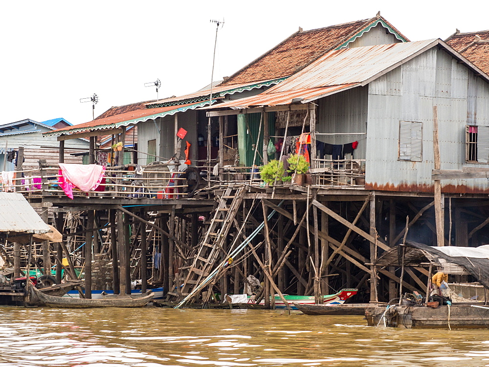 Houses on stilts, Kompong Khleang floating village, on the Tonle Sap lake, Cambodia, Indochina, Southeast Asia, Asia - 1242-200