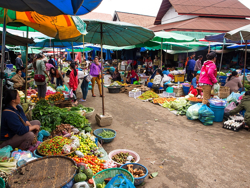 Central outdoor market, Luang Prabang, Laos, Indochina, Southeast Asia, Asia - 1242-212