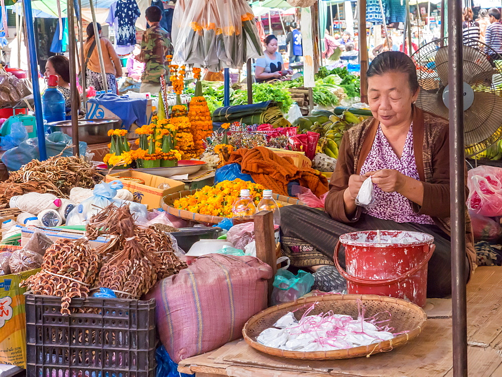 Vendor in central outdoor market, Luang Prabang, Laos, Indochina, Southeast Asia, Asia