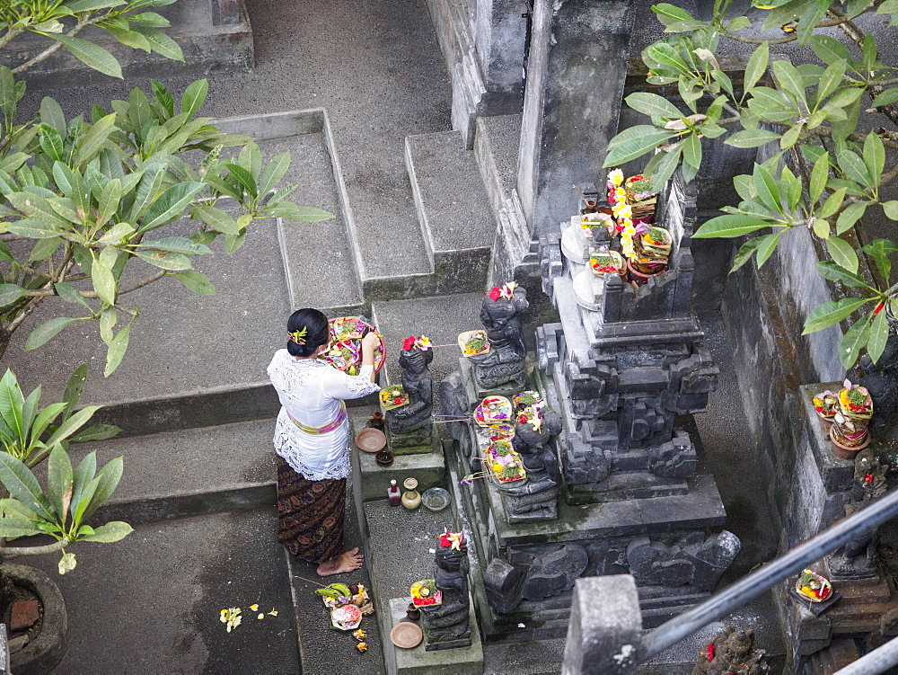 Woman giving offerings at a shrine, Ubud, Bali, Indonesia, Southeast Asia, Asia
