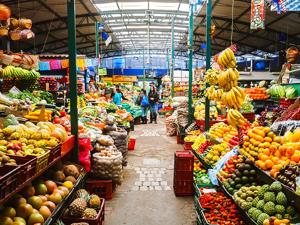 The produce section of Paloquemao market, Bogota, Colombia, South America - 1242-283
