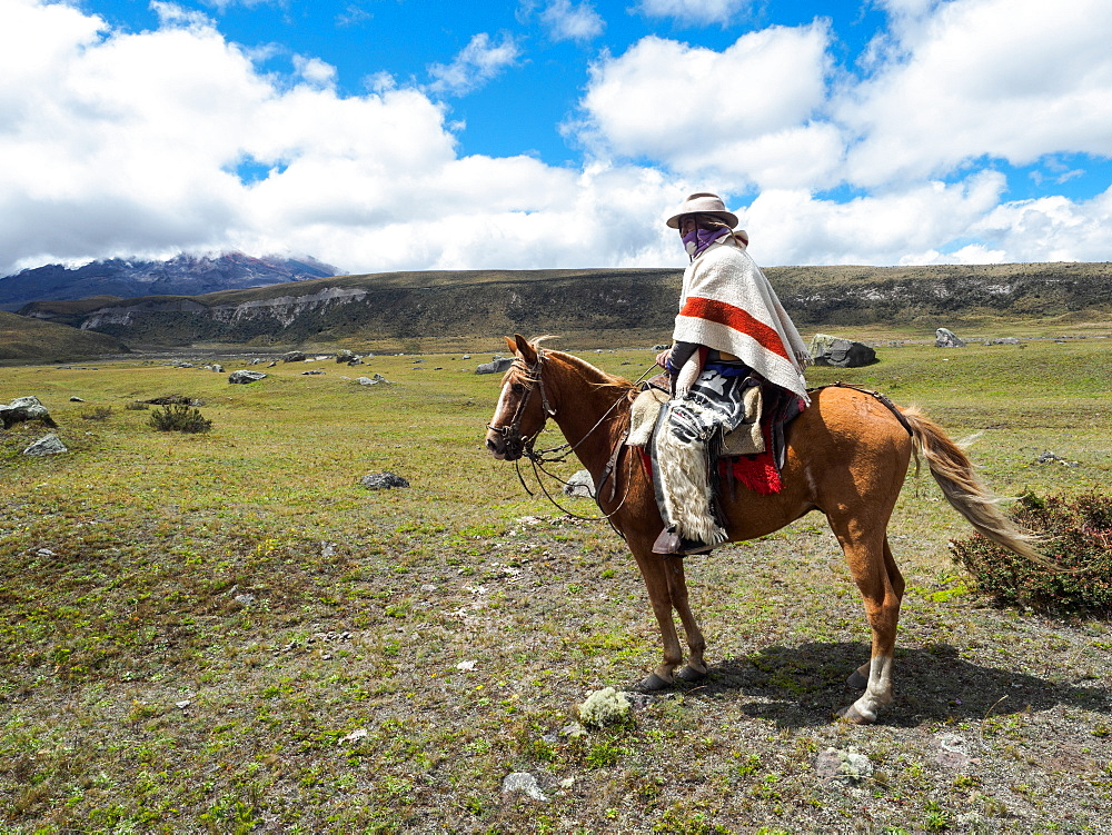 Indigenous man on a horse in high paramo landscape, Cotopaxi National Park, Andes mountains, Ecuador, South America
