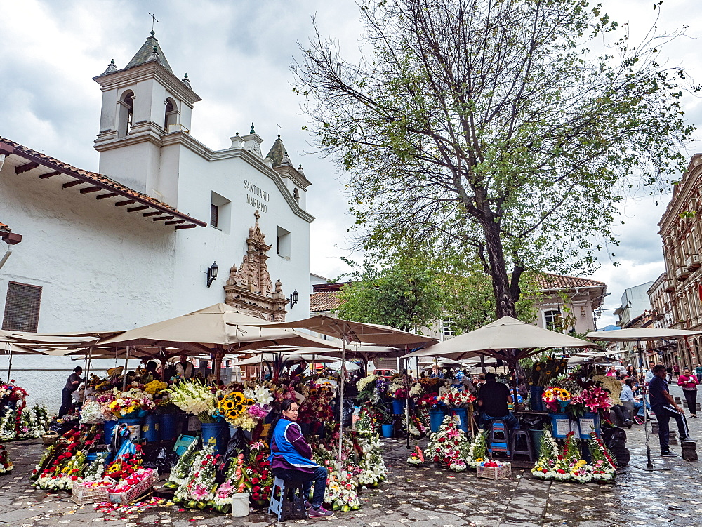 The daily flower market in Cuenca's Plazoleta del Carmen, Cuenca, Ecuador, South America