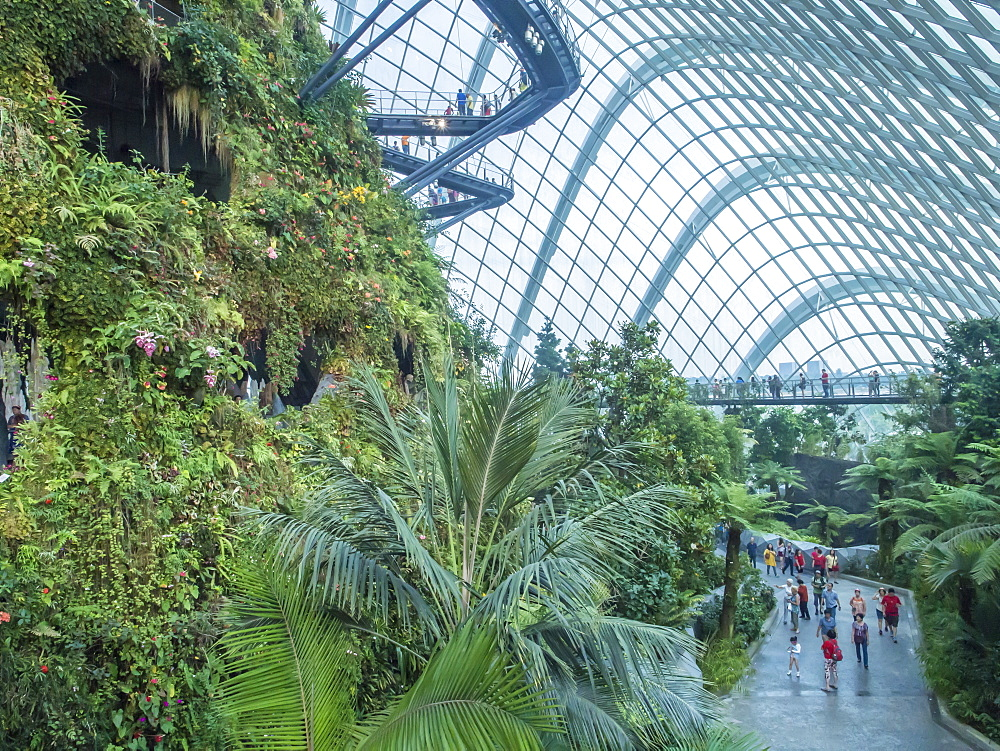 Indoor rainforest garden, Gardens by the Bay, Singapore, Southeast Asia, Asia - 1242-64