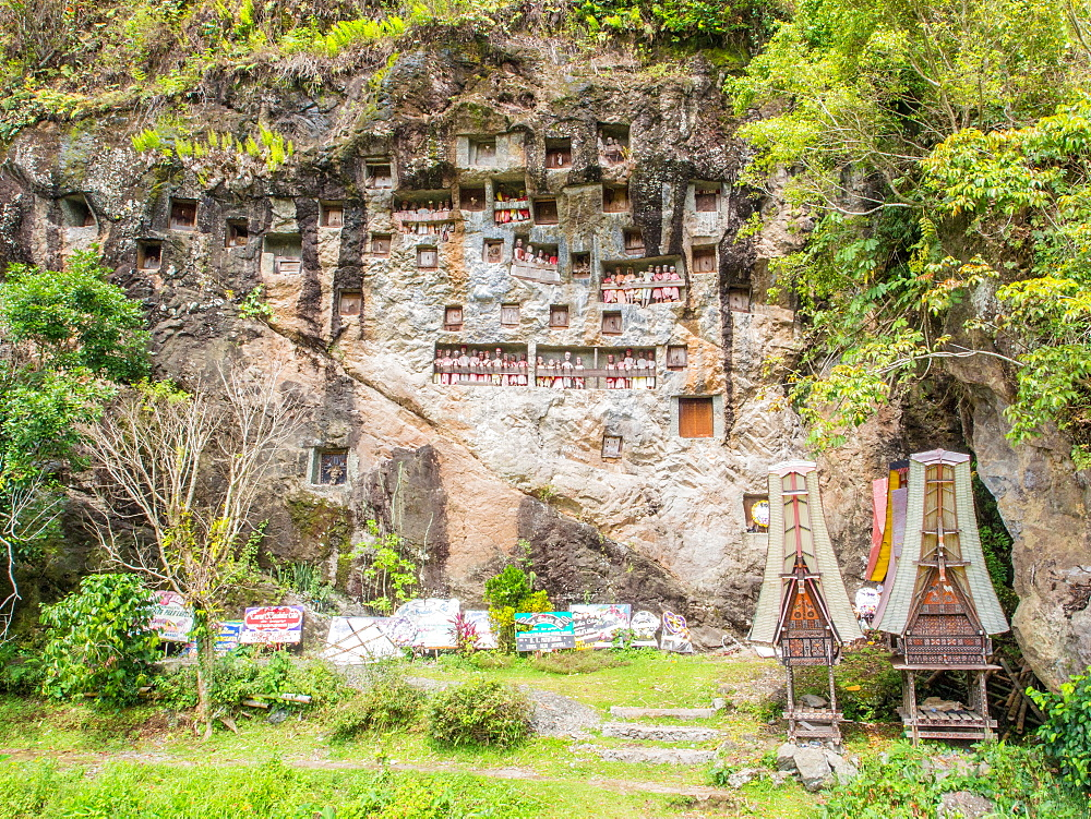 At this burial cliff, condolence signs from past funerals and coffin carriers shaped like traditional Torajan houses are left below the crypts and tao-taos, Tana Toraja, Sulawesi, Indonesia, Southeast Asia, Asia - 1242-78